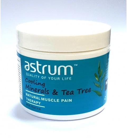 Astrum (Аструм) Tea Tree Mineral Gel Pain Reliever /  Минеральный гель с маслом чайного дерева 113 гр