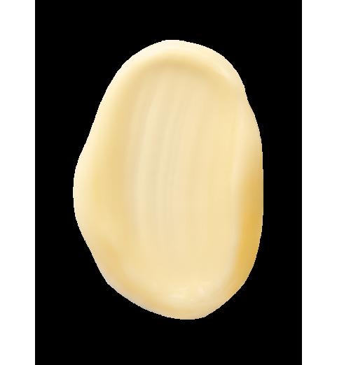 Christina (Кристина) ElastinCollagen Carrot Oil Moisture Cream with Vitamins A, E & HA for dry skin / Увлажняющий крем с витаминами А, Е и гиалуроновой кислотой для сухой кожи «Эластин, коллаген, морковное масло», 250 мл