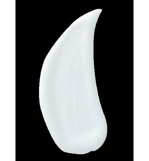 Christina (Кристина) Fresh Aroma Therapeutic Cleansing Milk for normal skin / Ароматерапевтическое очищающее молочко для нормальной кожи, 300 мл