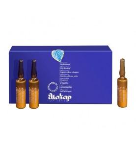 Eliokap Top Level Fitoessence Forfora Secca / Фитоэссенция для лечения сухой перхоти, 6 ампул по 4 мл