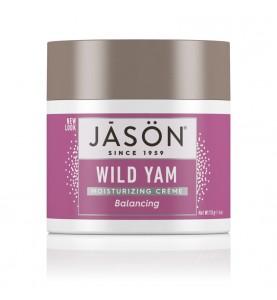 Jason Women Wise Wild Yam Moisturizing Creme / Крем с диким ямсом, 113 г