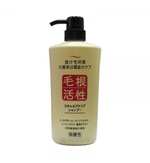 Junlove Scalp Clear Shampoo / Шампунь для укрепления и роста волос, 550 мл